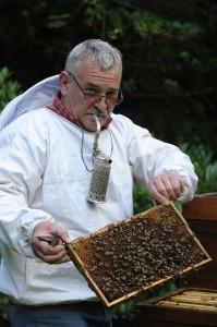 Beekeeper Mr. Kolb